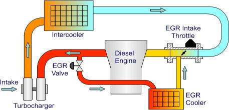Egr Overzicht Diesel